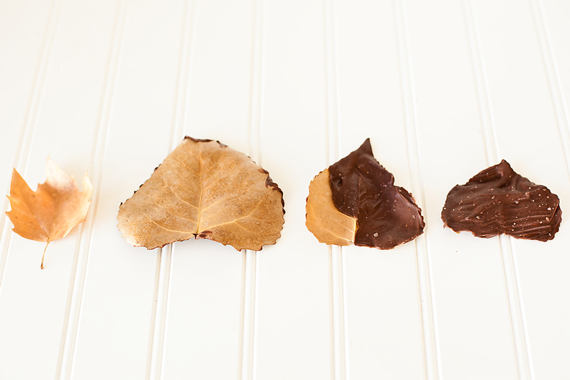 chocolate covered fall leaves
