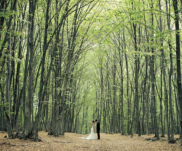 imagia wedding photography